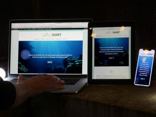 Création d'un site WordPress Divi SaltGiant-Etn avec lInstitut de Physique du Globe de Paris