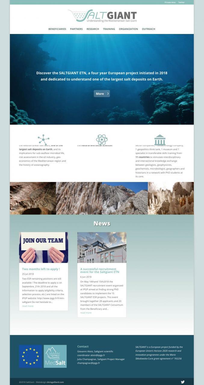 saltgiant webdesign science paris